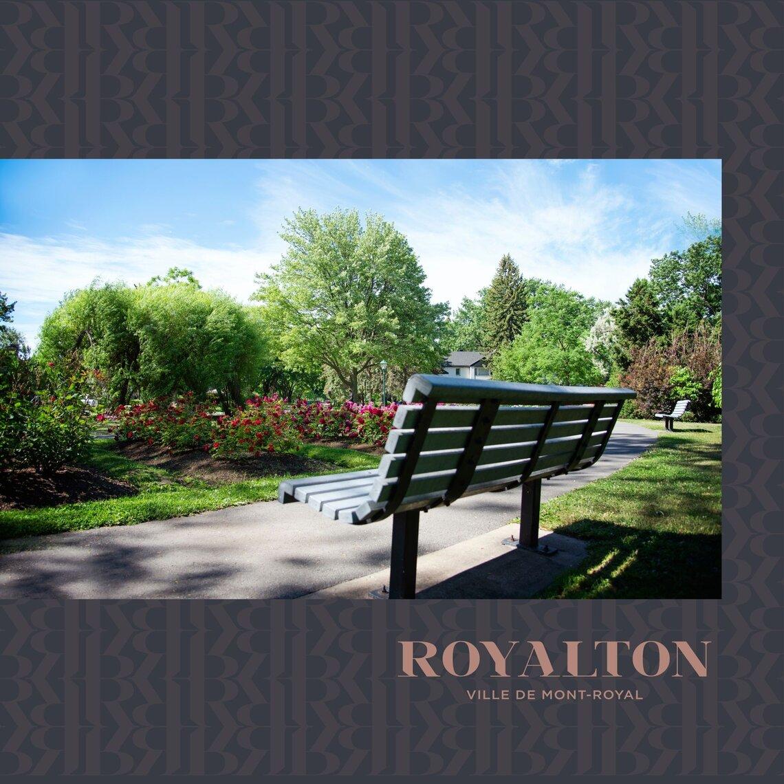 projet royalton mont royal